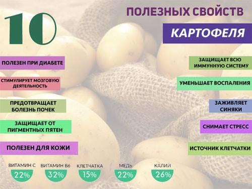 Какие овощи можно есть при запоре?