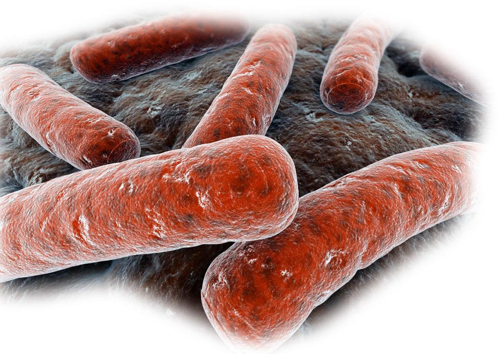 Первые признаки туберкулеза кишечника