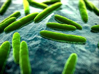 Виды и способы лечения кишечной инфекции