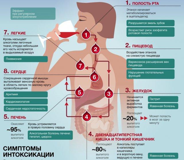 Что делать при болях в желудке после употребления алкоголя