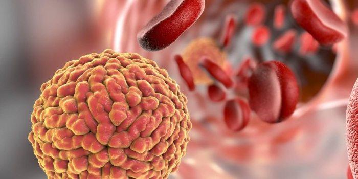 Что такое бактериальный простатит и как его вылечить?