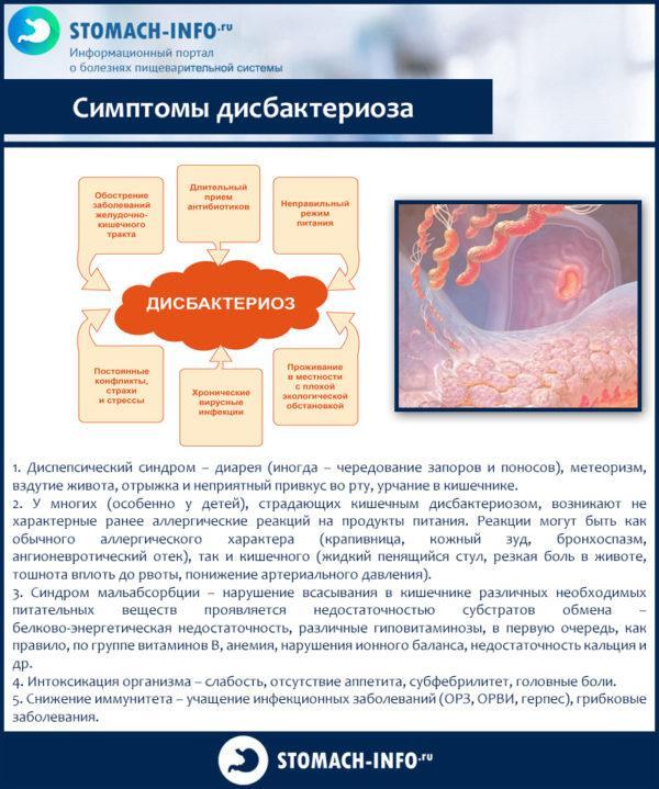 Диета и продукты при дисбактериозе кишечника