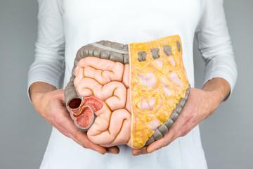 Как диагностировать и избавиться от воспаления кишечника