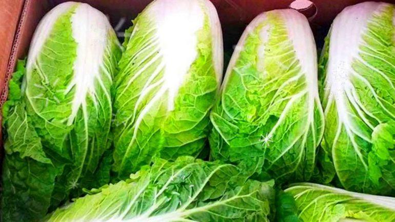 Как лечить геморрой капустой: состав, 6 лечебных свойств и 6 народных средств из капусты