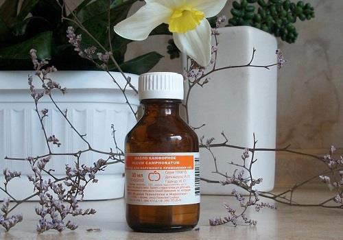 Как применять камфорное масло в лечении геморроя