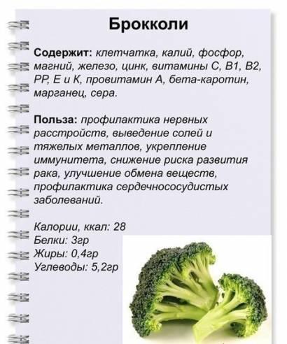 Можно ли есть брокколи при гастрите?