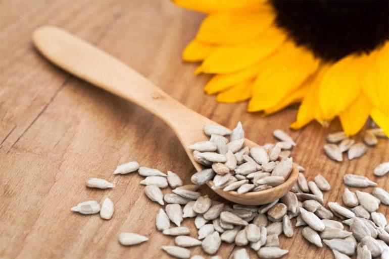 Можно ли есть тыквенные и подсолнечные семечки при геморрое? 5 рекомендаций врачей