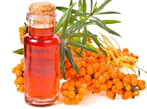 Облепиховое масло при язве желудка: лечение, как принимать, лечебные свойства