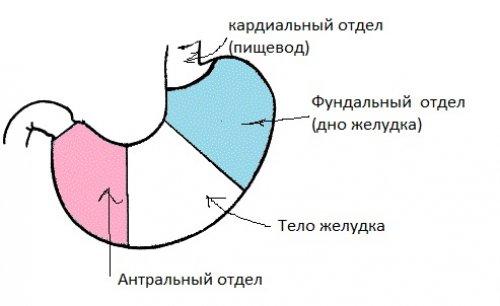 Пангастрит