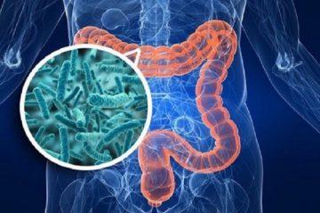 Препараты для лечения синдрома раздраженного кишечника: эффективные лекарства