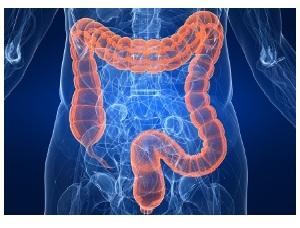 Проблемы с толстой кишкой: симптомы и лечение заболеваний