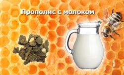Прополис при гастрите с повышенной и пониженной кислотностью: как правильно пить настойку, лечение