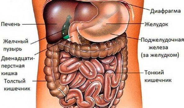 Пути лечения канцероматоза брюшной полости