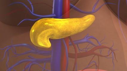 Симптомы и лечение диффузных изменений в поджелудочной железе