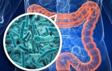 Температура при кишечной инфекции: симптомы, способы лечения