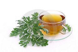 Травы при гастрите желудка с повышенной и пониженной кислотностью (фитотерапия): какие желудочные сборы пить для лечения