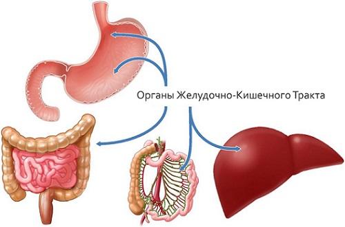 Воздух в желудке и отрыжка через рот: причины появления, как избавиться
