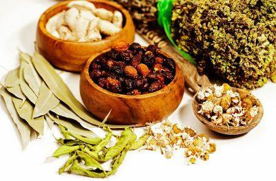 Фиброзно-кистозная мастопатия: лечение народными средствами с помощью трав и сборов ЛечениеБолезней.com