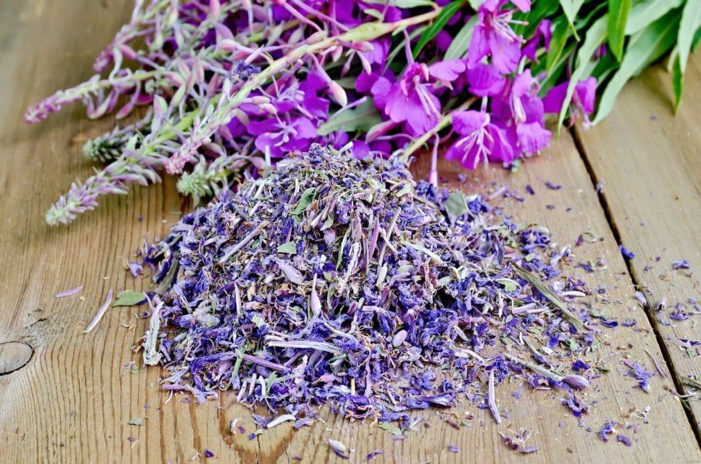 Иван-чай от простатита: польза и вред, рецепты, способ применения