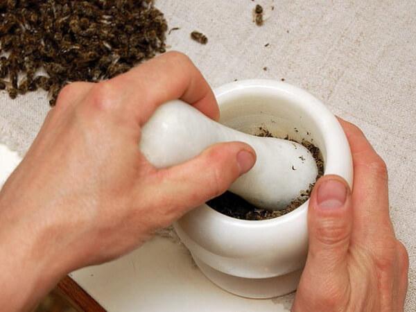 Как лечить аденому простаты пчелиным подмором?