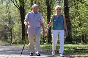 Какими препаратами можно лечить дискинезию желчевыводящих путей