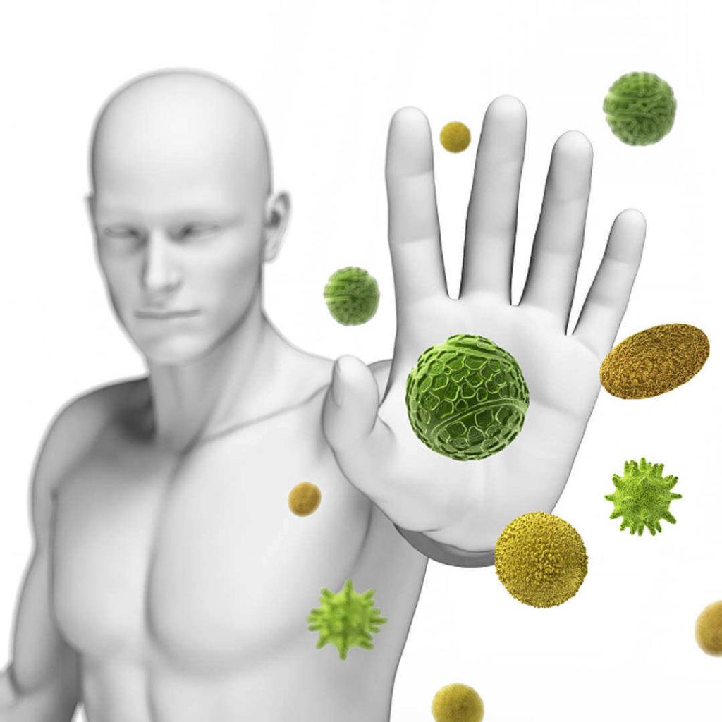 Луковая шелуха при аденоме простаты: польза и вред, рецепты, способ применения