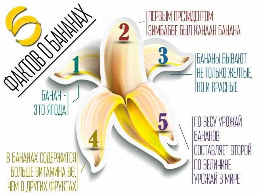 Можно ли есть бананы при запоре?