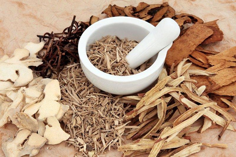 Осиновая кора при аденоме простаты: рецепты, полезные свойства, противопоказания