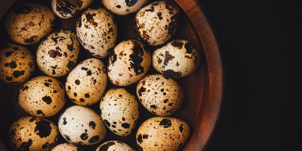 Яйца перепелиные при лечении простатит ципролет простатите