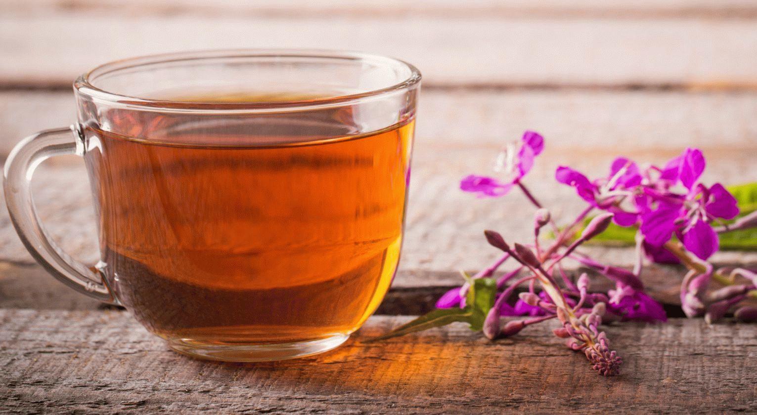 Полезен ли Иван-чай для потенции