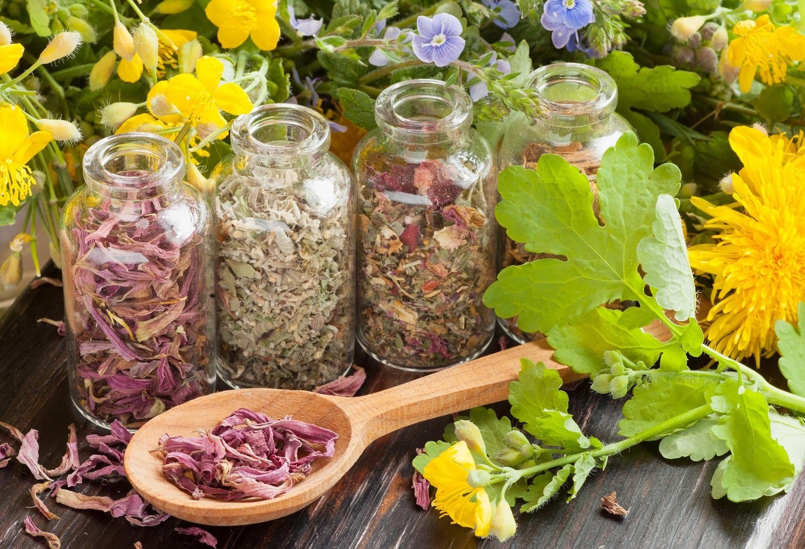 Травы при простатите: особенности лечения, самые эффективные рецепты