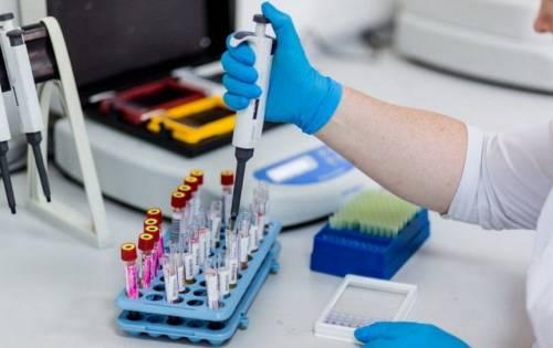 Виды анализов на определение в организме бактерии хеликобактер пилори (helicobacter pylori)
