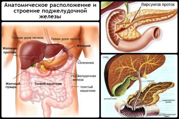 Как лечить поджелудочную железу: симптомы и советы врача