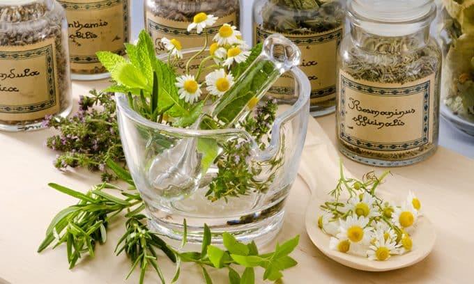 Лечение цистита травами в домашних условиях