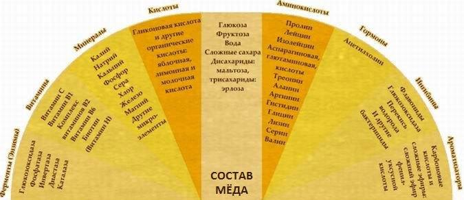 Лучшие рецепты с медом для лечения простатита