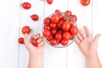 Помидоры при панкреатите: можно ли есть, правила употребления