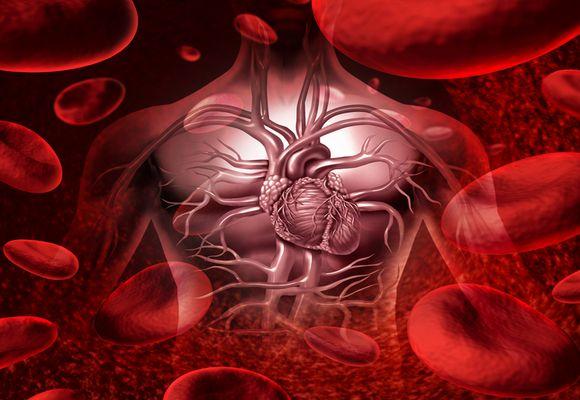 Список лекарственных препаратов от тромбофлебита