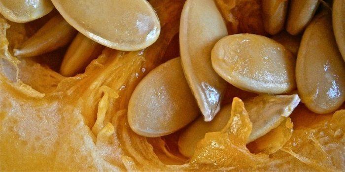 Тыквенные семечки от простатита: рецепт и применение