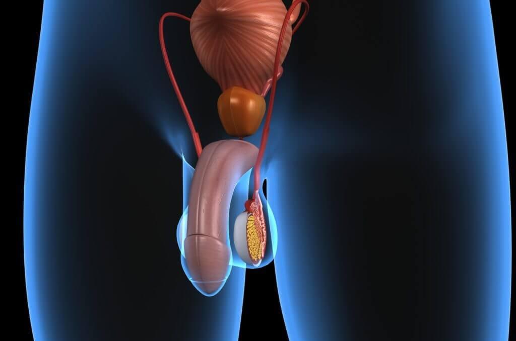 Удаление аденомы простаты лазером: показания, ход операции, реабилитация