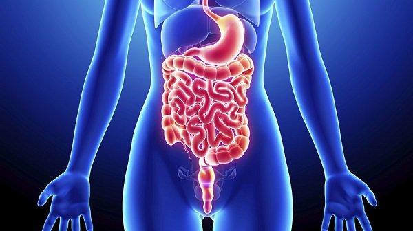 Инфекционныйколит - причины, симптомы и лечение