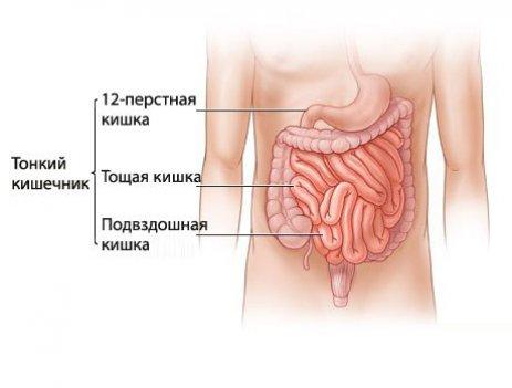 Причины возникновения воспаления тонкого кишечника