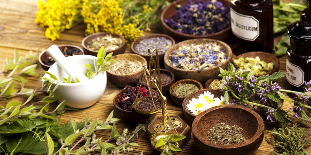Травы и сборы для лечения желудка — правила применения и рецепты