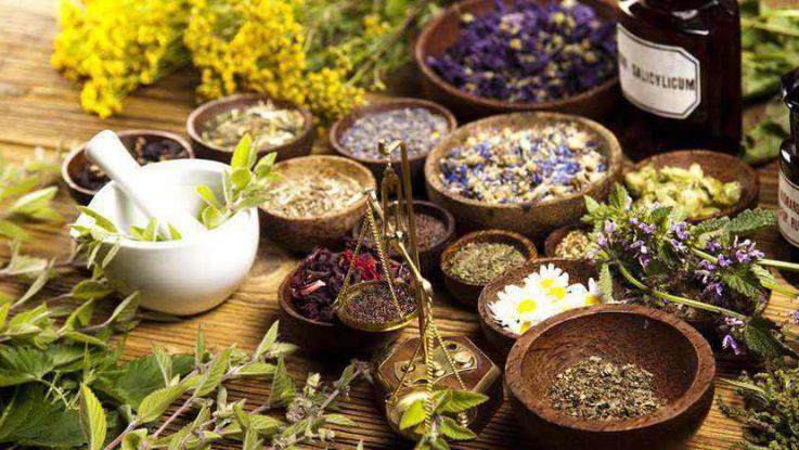 Травяной сбор от геморроя: 5 лучших растительных комплексов