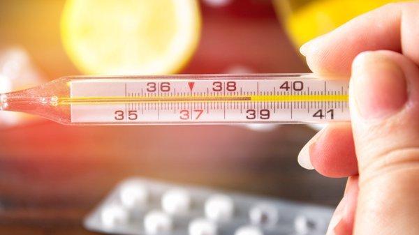 Трихинеллез у взрослых - симптомы и лечение