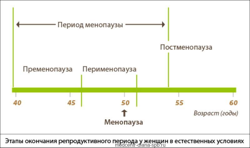 Фазы менопаузы