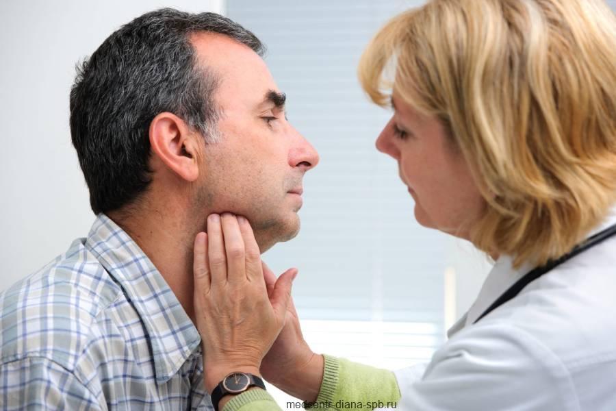 Щитовидная железа – почему она так важна для нашего организма? Строение, функции, гормоны, заболевания